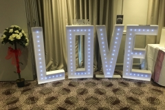 love-letters-4ft-twinkling-trees